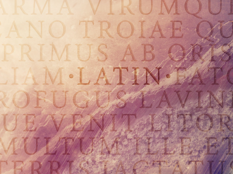 how latin became the language of the roman empire unravel magazine